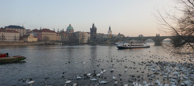 My Visit to Prague